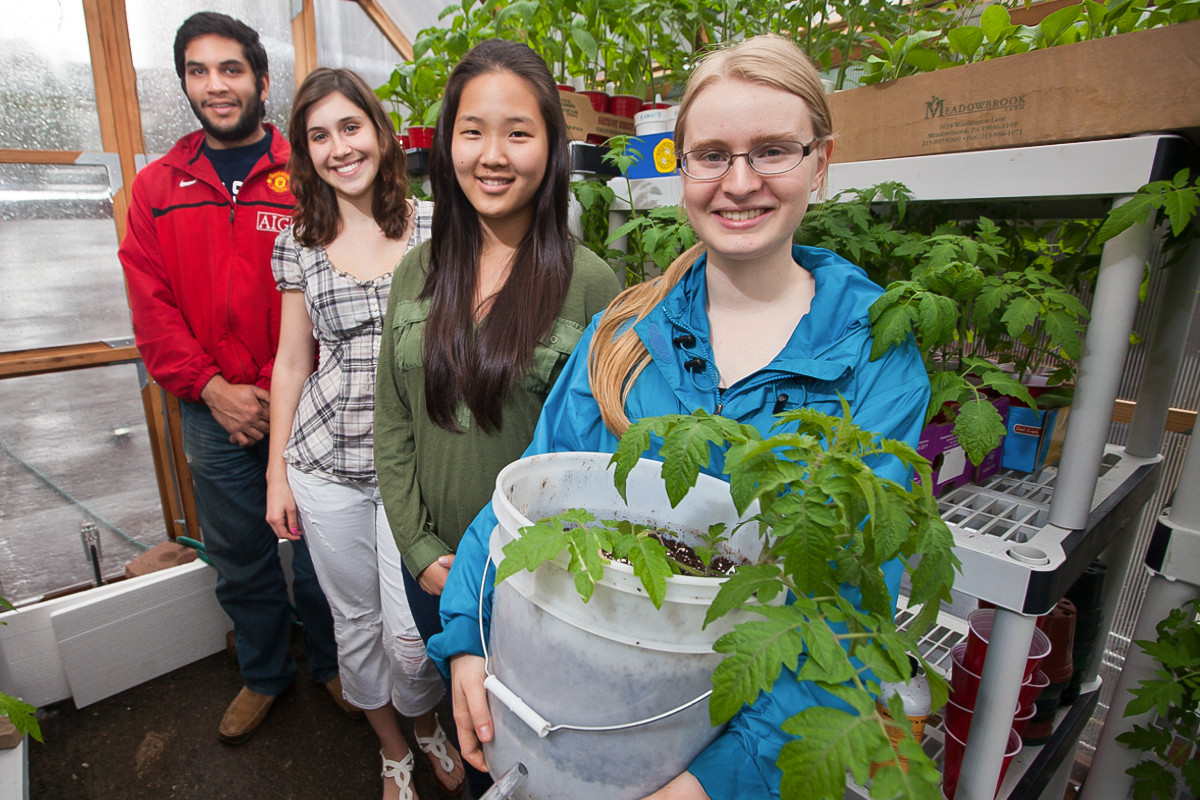 "Lafayette Tech Clinic students created a ""bucket garden"" in a local greenhouse."
